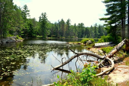 Third portage into Sparkler Lake for a fishing tournament