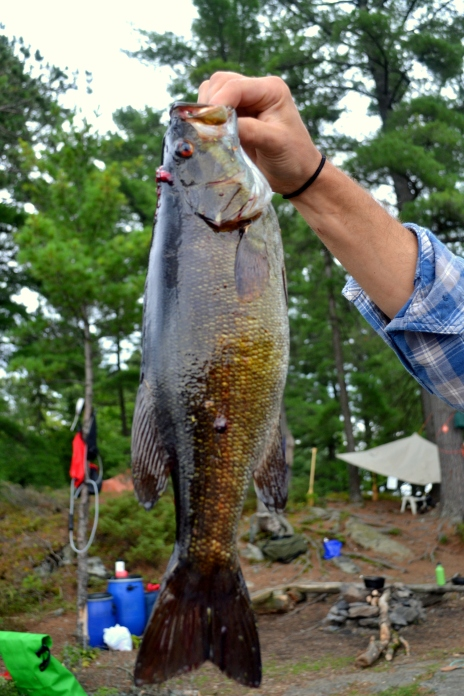 My impressive small mouth bass.