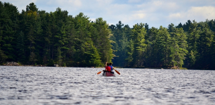 Paddling on Bell Lake