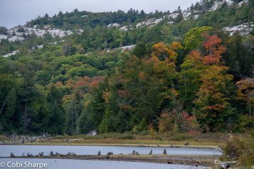Fall happening on Killarney Lake