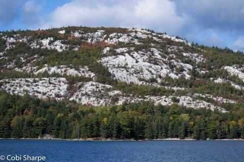 O.S.A. Lake