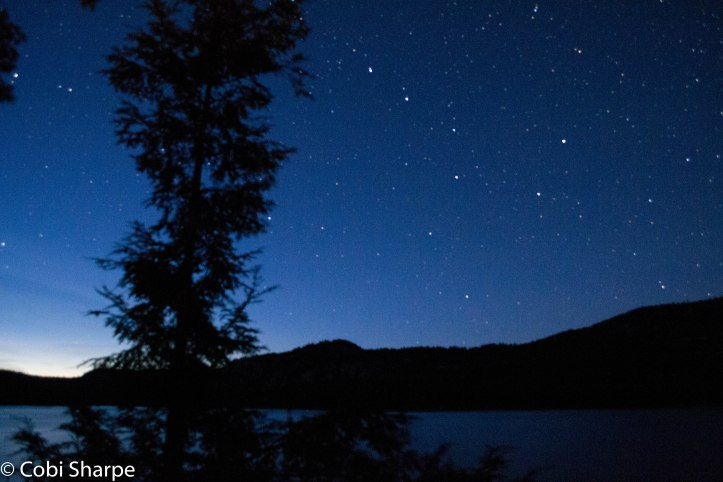 Can you see the Big Dipper?