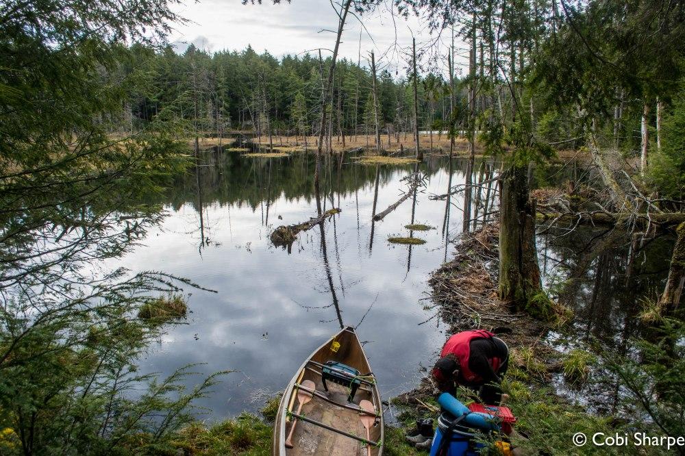 Put-in at Muck Lake from Cinder Lake