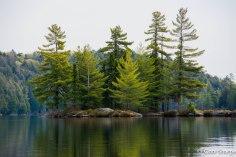 Cache Lake