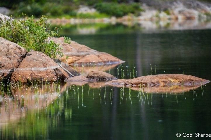 Sylvester Lake
