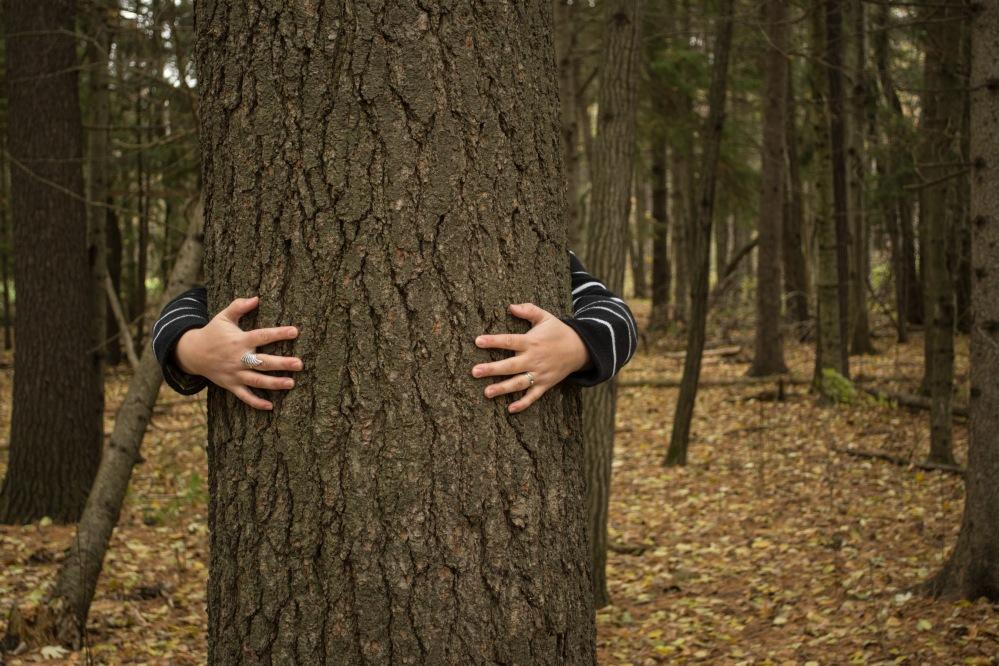 Invisible Self Portrait - the tree hugger