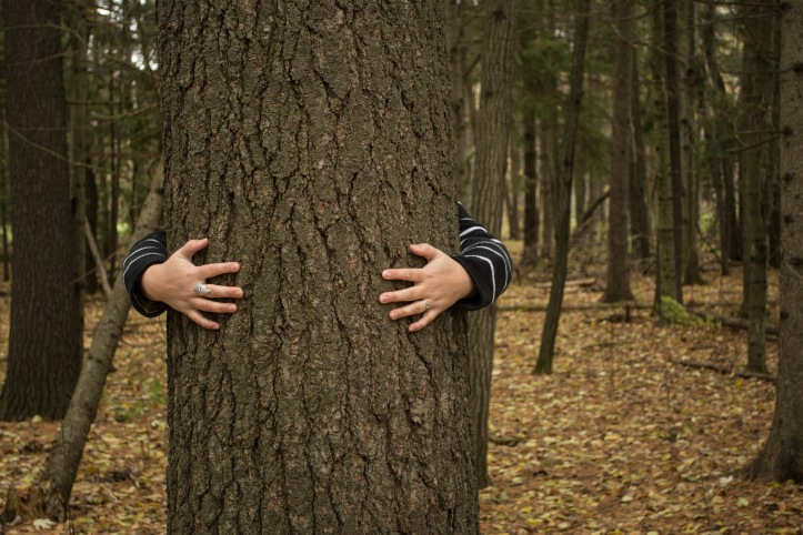 Invisible Self Portrait - the tree hugger