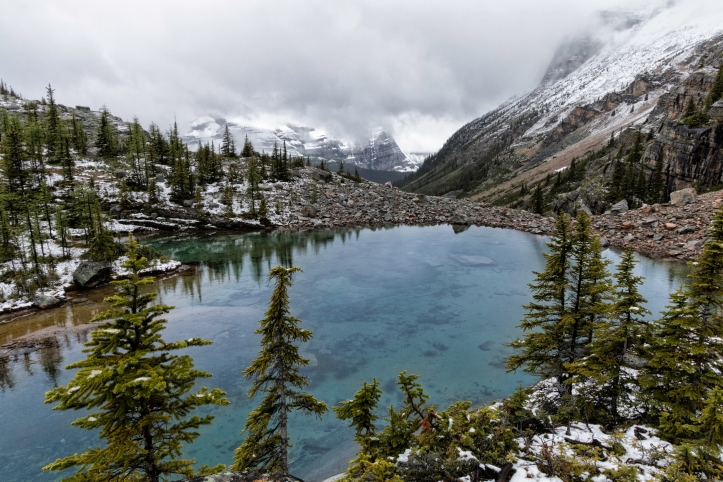 Lake O'Hara hike, Yoho. Photo by Nicole Atkins